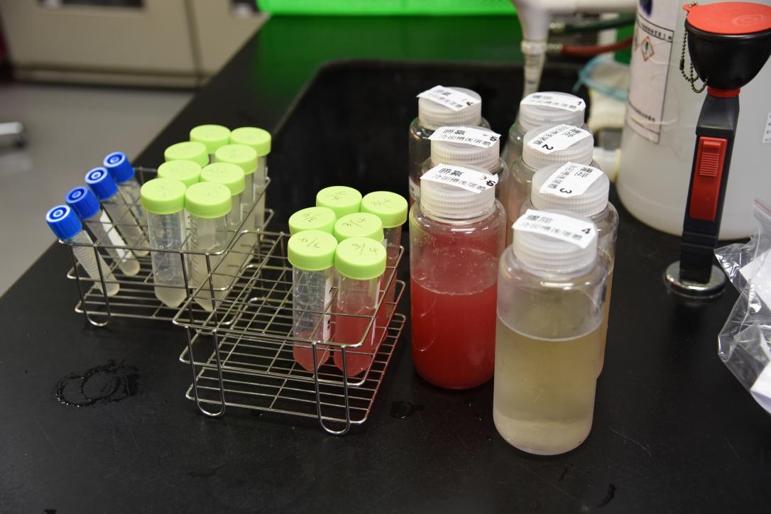 動物所微生物實驗室專門服務養豬場進行衛生安全檢測